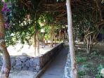 Vialetto giardino.