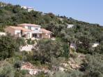 Luxury villa settled amidst lush greenery