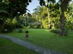 Villa Kelapa huge garden