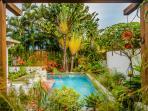 Piscine chauffée à 28°C dans jardin tropical