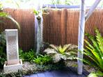 Water feature and plants around the patio
