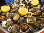 The first man gets the oyster, the second man gets the shell - Andrew Carnegie (CR. M. Terry)