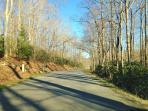 Road leading to the cabin is tree-lined, paved and easy to navigate, no steep hills.