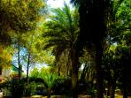 Visión parcial jardines