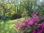 Displays of different flowers in the award winning grounds changing throughout the Seasons