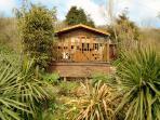 tropical garden and sundeck