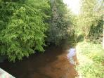 The Water of Leith Walkway (a 1 minute walk from the apartment)