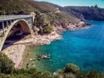 The road between Castiglioncello and Livorno...do you remember the famous movie 'Il sorpasso'?