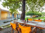 Enjoy your meals under the shade of over 60 years old plane trees!