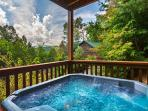 Americana  View Privacy King Beds Pool Access Hot Tub Wii  Free Nights