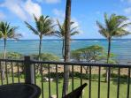 View from your lanai