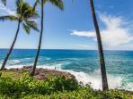 Sunny Poipu, Hawaii