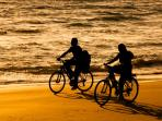 Take a bike ride on the beach