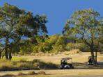 Spend the day golfing in Wild Dunes!