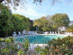 Jump on in to the Pelican Bay pool!