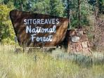 SitGreaves National Forest, NE Arizona White Mountains