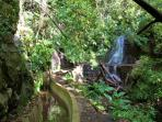 The Levada dos Tornos - near the house - is a perfect hike to enjoy nature and landscapes