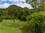 The subtropical gardens of  'The Dales' with views to Mt Cooran