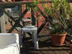 sunny exclusive terrace