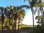 6th tee view from the lanai.