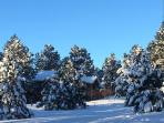 Fresh snow of our side yard