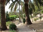 Landscaped communal gardens