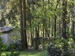 Achterzijde 'Paardenstal' met een raampartij en uitzicht in het bos.
