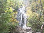 Angel Falls, 90 foot drop; a 45 minute drive,  + 30 minute hike