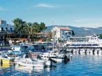 Polis and Latchi harbour fabulous for fresh seafood meze