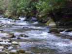 The Nantahala River and the N.O.C. are 5 minutes up the road