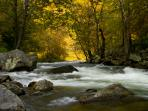 The Nantahala River is just a few minutes away