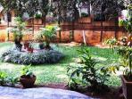 Garden area in the building..