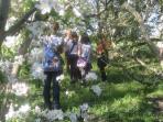 Finca de Agricultura Ecológica, a 1km de Beautiful Alamedas