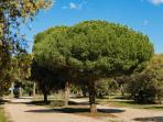 Reserva Natural 'Riberas de Castronuño-Vega del Duero'