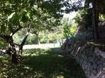 the garden beside the villa
