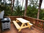 Enjoy a picnic with the family right on the deck Gas Grill