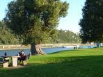 Vor unserem Haus- Grünbereich / Wiese +direkt dahinter der Rhein - Blick zur Festung Ehrenbreitstein