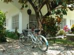 2 cruiser bicycles are available for visiting and use in the village