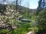 une partie du jardin devant lamaison