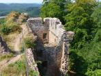 vestiges de châteaux que l'on peut voir en forêt