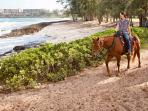 Horseback riding available through Turtle Bay Resort
