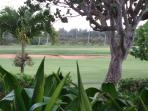 View from the screened in lanai of the Fazio course at Turtle Bay Resort