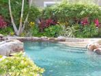 Amazing Water Front Pool Available for Our Guests Use (BEHIND NEIGHBORING HOUSE)