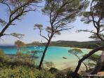 Toulon: Les Iles d'Or. Ile de Porquerolles...