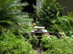Detail photo of garden
