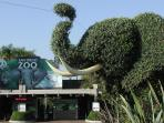 World renowned San Diego Zoo - just 20 minutes away.