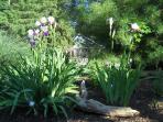 Shorewinds gardens bloom all 3 seasons.