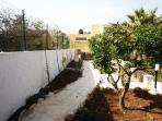 viale del giardino