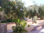 Frazione del giardino esterno