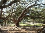 Fort Matanzas National Park - walking distance from Summerhouse